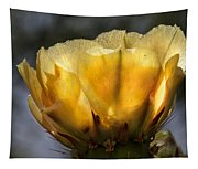 Backlit Yellow Cactus Flower Tapestry