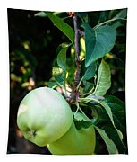 Backyard Garden Series - 2 Apples Tapestry