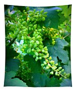 Backyard Garden Series - Young Grapes Tapestry