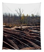 Badlands In Autumn Tapestry