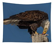 Bald Eagle Lunch Tapestry
