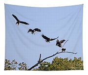 Bald Eagle Sequence  1277 Tapestry