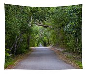 Bald Head Island Study 5 Tapestry