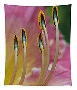Ballerina Slippers Tapestry