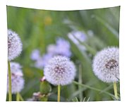 Balls Of Seed Tapestry