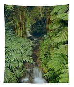 100837-bamboo And Ferns Creek  Tapestry