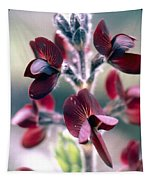 Barbed Thermopsis Or Black Pea Tapestry