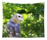 Barn Owl Looking Skyward Tapestry