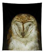 Barn Owl Tapestry