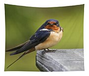 Barn Swallow Tapestry