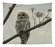 Barred Owl On A Tree Tapestry