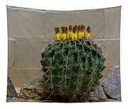 Barrel Against Wall No50 Tapestry