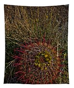 Barrel Cactus Top View Tapestry
