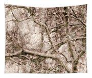 Barren Tree Tapestry