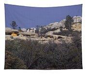 Base Camp - White Ledge Plateau - San Rafael Wilderness Tapestry