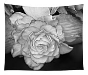 Be Gentle Bw Tapestry