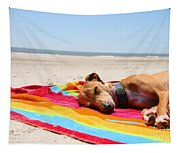 Beach Dreams Are Made Of These Tapestry