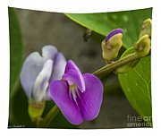 Beaked Butterfly Pea 9 Tapestry
