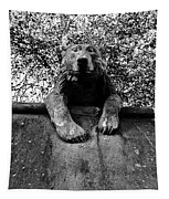 Bear On The Wall Tapestry