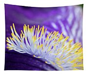 Bearded Iris Macro Tapestry