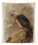 Bearded Vulture By Thorburn Tapestry