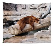 Bearly Relaxing Tapestry