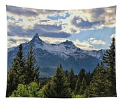 Beartooth Mountains In Spring Tapestry