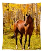 Beautiful Autumn Horse Tapestry