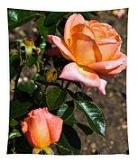 Beautiful Bloom Of The Rose Atlantic Star Tapestry