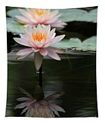 Beautiful Colorado Water Lilies Tapestry