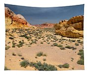 Beautiful Hiking In The Valley Of Fire Tapestry