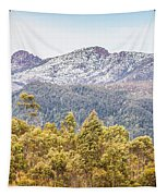 Beautiful Landscape With Partly Snowed Mountain  Tapestry