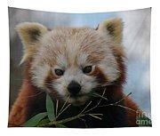 Beautiful Red Panda Tapestry