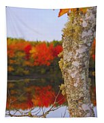 Beauty And The Birch - Nova Scotia Tapestry
