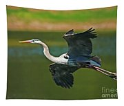 Beauty In Flight Tapestry