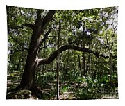 Beauty In The Forest Tapestry