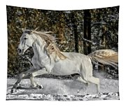 Beauty In The Snow Tapestry