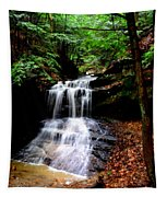 Beauty In The Woods Tapestry