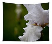 Beauty Of An Iris Tapestry