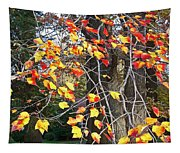 Beauty Of Fall Tapestry