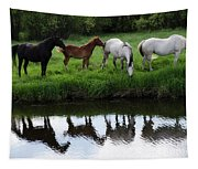 Beauty Of Place Tapestry