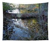 Beaver Dam Tapestry