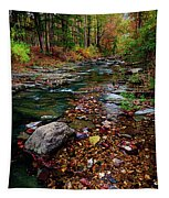 Beaver's Bend Tiny Stream Vertical Tapestry