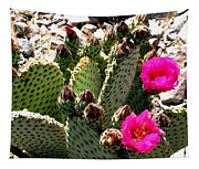 Beavertail Cactus Tapestry