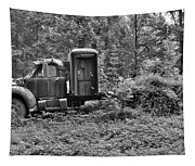Becoming A Part Of The Landscape Black And White Tapestry