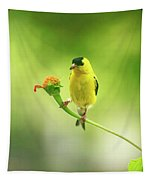 Goldfinch On Zinnia With Textures Tapestry