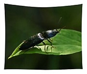 Beetle At Sunrise Tapestry