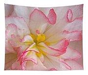 Begonia Pink Frills - Horizontal Tapestry