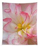 Begonia Pink Frills - Vertival Tapestry