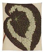 Begonia Rex Tapestry